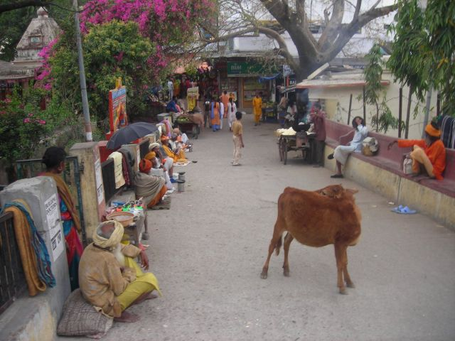 this is a little beagerstreet you have to pass to get from one part to the other in Rishikesh
